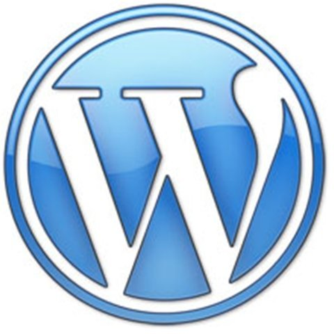 wordpress-bleu2